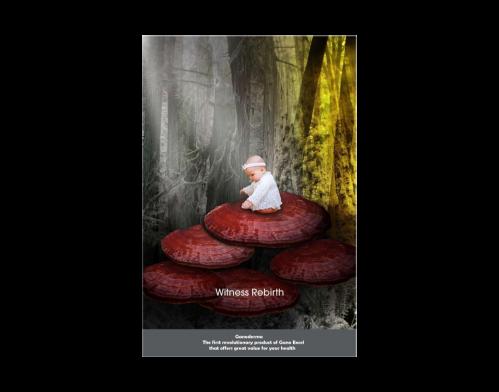 Poster Ganoderma